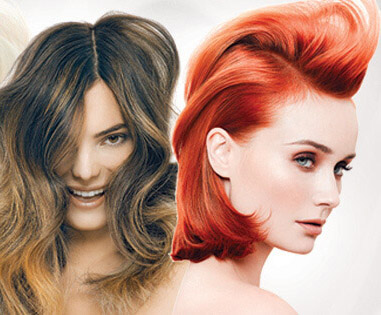 Hair Coloring And Highlights C D Bos Hair Design 406 295 5252